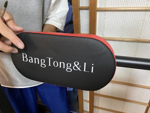 BangTong&Li ぶら下がり健康器背中のクッション