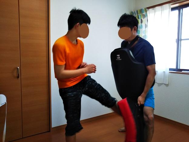 プロフェッショナル プロテクター蹴り